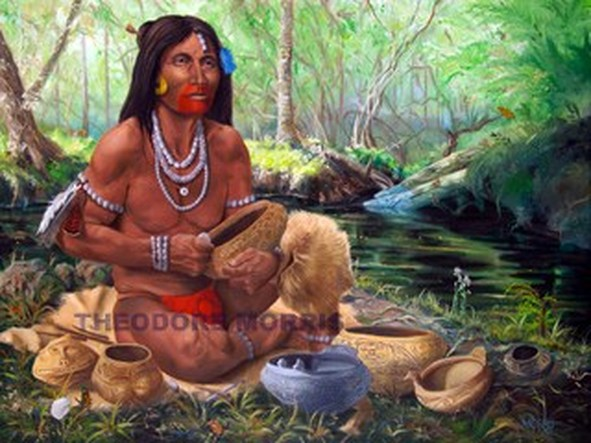 the timucua indians essay Essay/term paper: the seminole essay, term paper, research paper: they shared the land with another group of indians, the apalachee and the timucua.